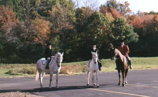 Team Schaefer - Hannah Schaefer on JJ Alexandra Schaefer on Ghost and Jeffrey Schaefer on Rowdy